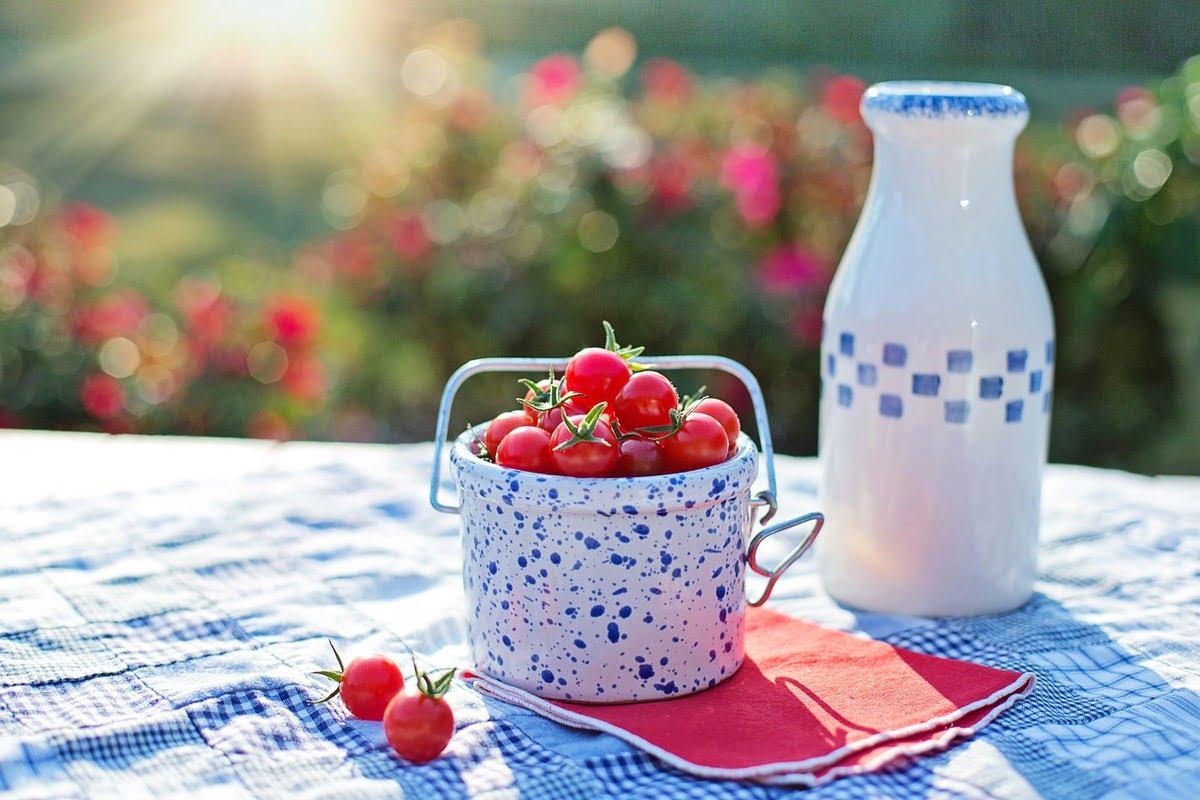 Bio-Lebensmittel boomen